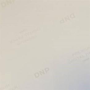 DNP Standard Paper DSRX1HS-4X6HS 2 Rolls 700 Prints 10x15 for DS-RX1HS
